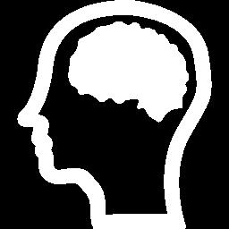 Brain 3 256